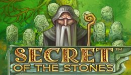 Secret of the Stone